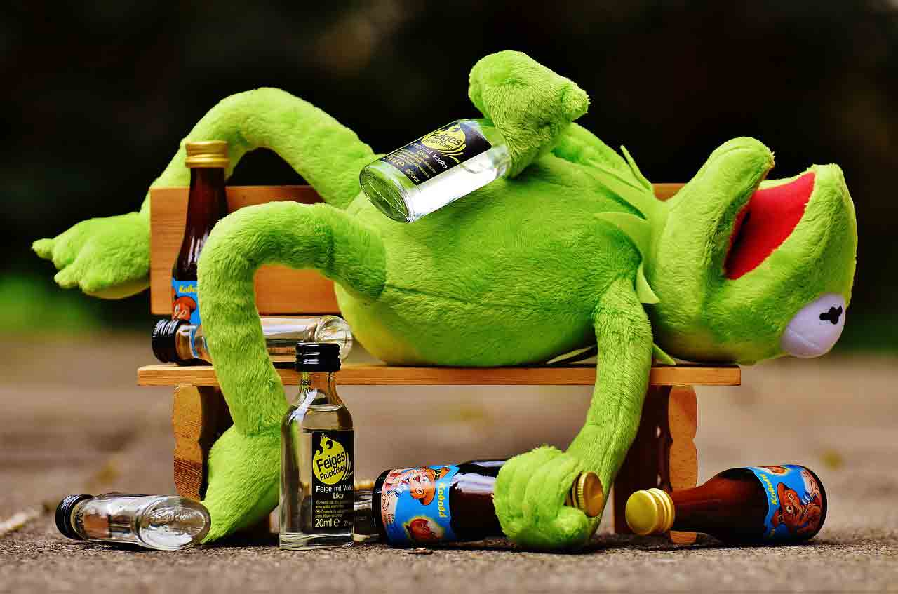Kermit drunk on a park bench