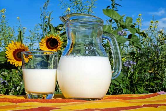Dairy in a bottle and pitcher
