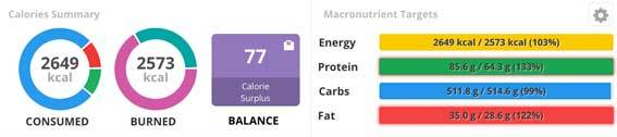 Calories summary