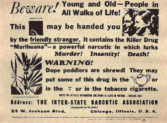 marijuana / cannabis ban