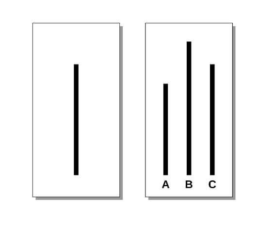 Asch experiment lines