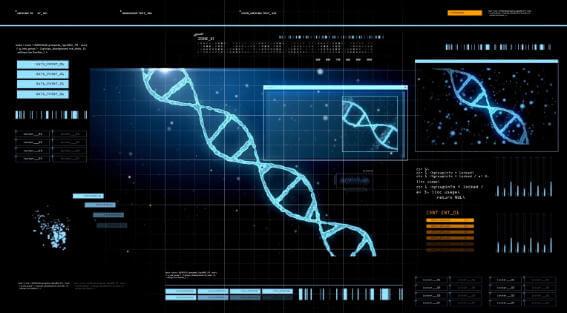 DNA inside a computer program